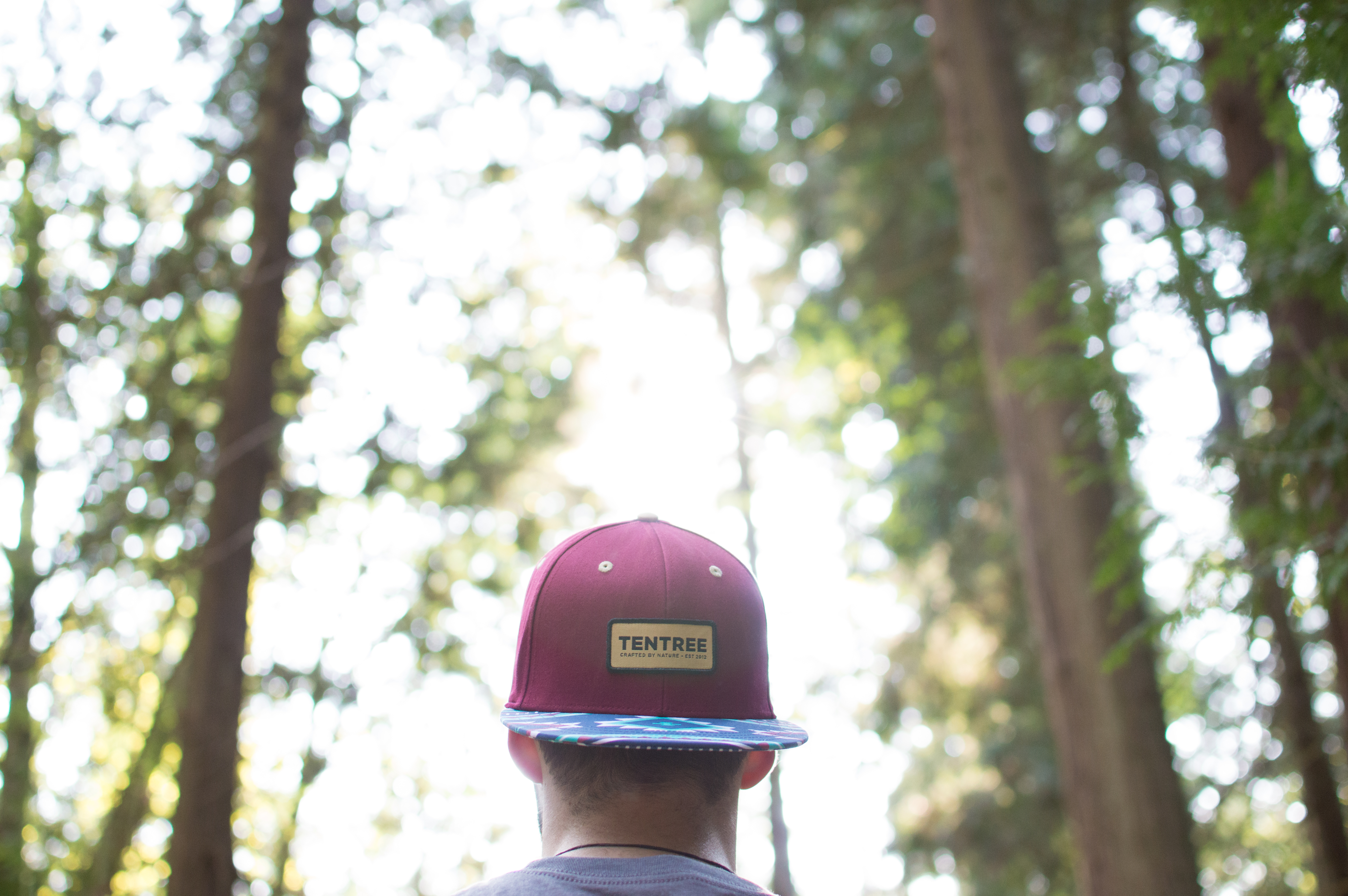competitive price 32825 f008a Hump Day Must Have The Hat You NEED For Earth Day. image number 17 of lids  tentree ...
