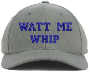 WattMeWhip